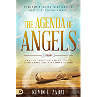 The Agenda of Angels: What the Holy Ones Want You to Know About the Next Move (English Edition)