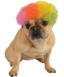 2bc6538cfcd Amazon.com : Push Pushi Rainbow Line Dog Raincoat - Pink : Pet Supplies