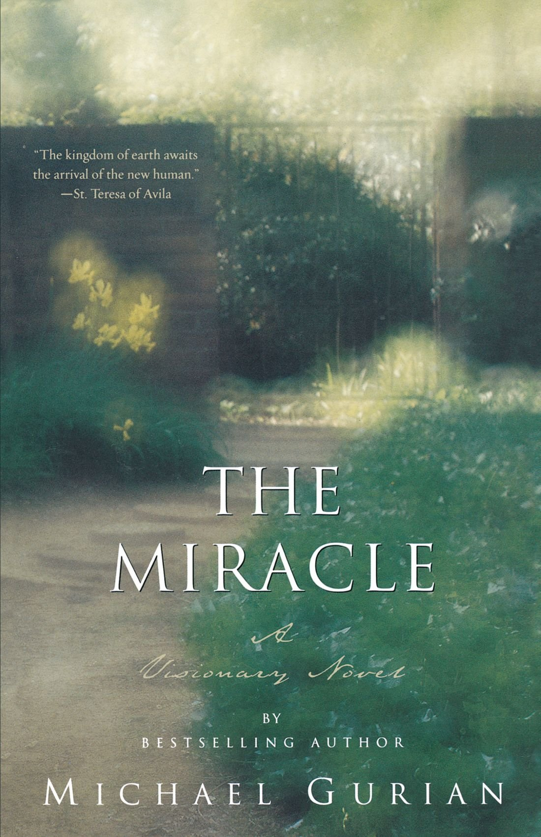 The Miracle: A Visionary Novel pdf epub