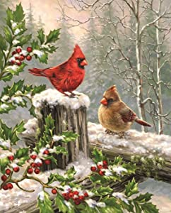 Wamika Merry Christams Garden Flags 12 x 18 Double Sided, Cardinal Red Bird Holly Berry Branches Snow Welcome Winter Holiday Yard Outdoor House Flag Banner for Party Home Christmas Decorations