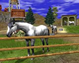 Wildlife Park 2 - Horses [Online Game Code]