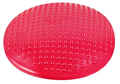 Hudora 76721 - Cojín de Equilibrio, Color Rojo: Amazon.es ...