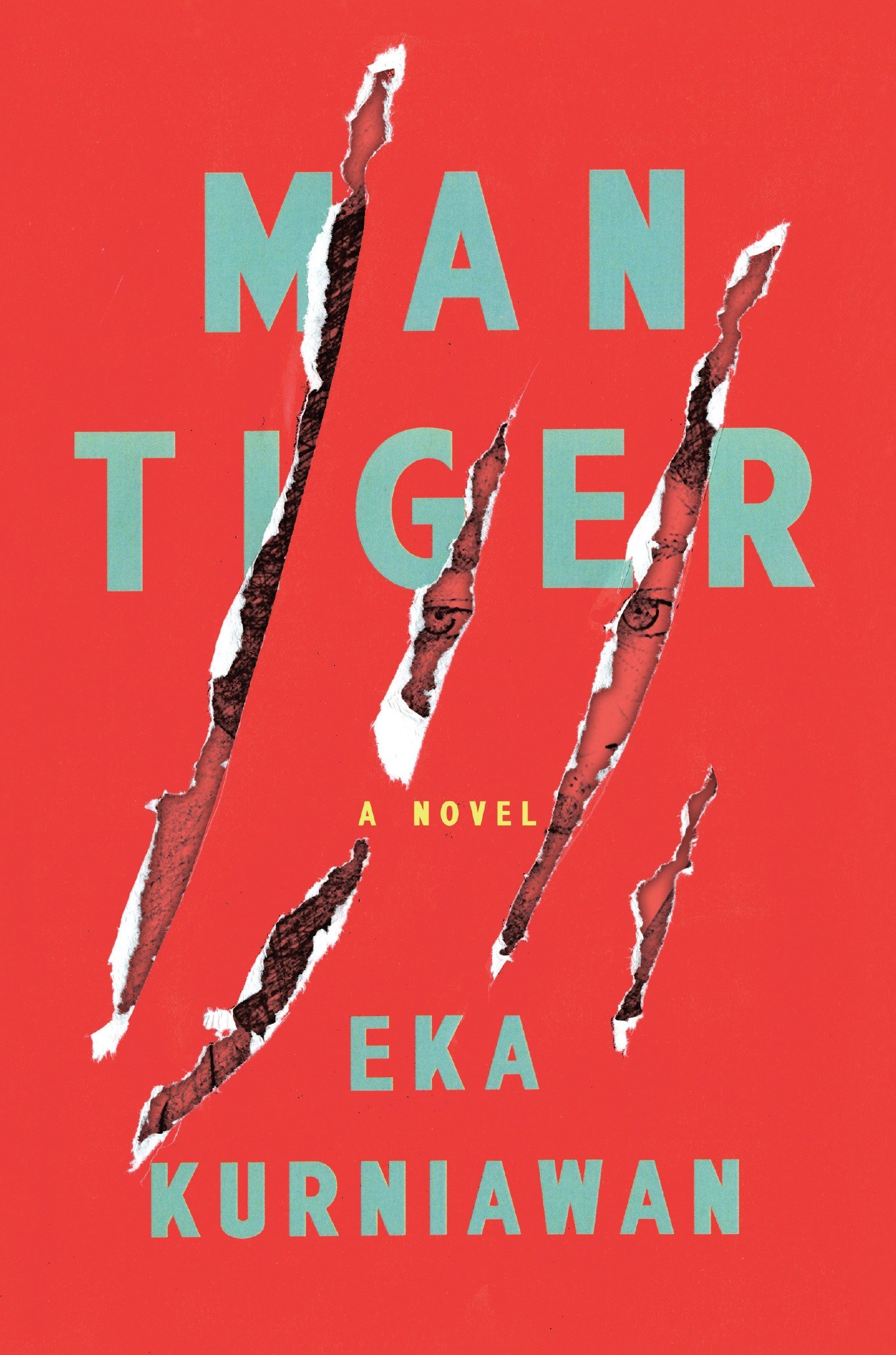 Image result for man tiger book