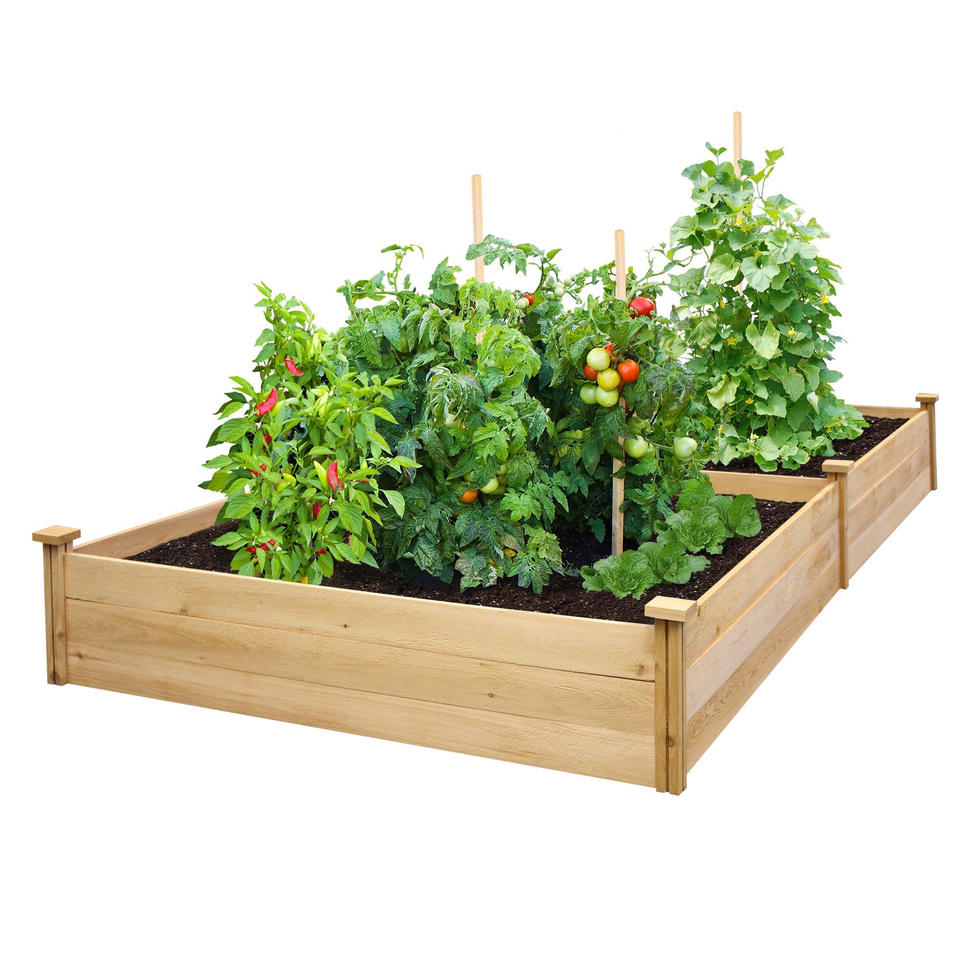 Best Value Cedar Raised Garden Bed Planter 48'' W x 96'' L x 10.5'' H