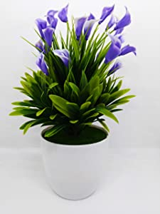 QUICK UNBOX Calla Lily Purple Flower Artificial Plants with Pot for Home, Office, Balcony, and Living Room Decoration - Gift Item