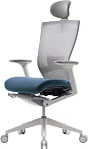 SIDIZ T50 Highly Adjustable Ergonomic Office Chair (TNB500HLDA): Advanced Mechanism for Customization/Extreme Comfort, Headrest, Ventilated Mesh Back, Lumbar Support, 3D Arms, Seat Slide/Slope (Blue)
