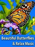 Beautiful Butterflies & The Best Piano Music - Relaxing Screensaver