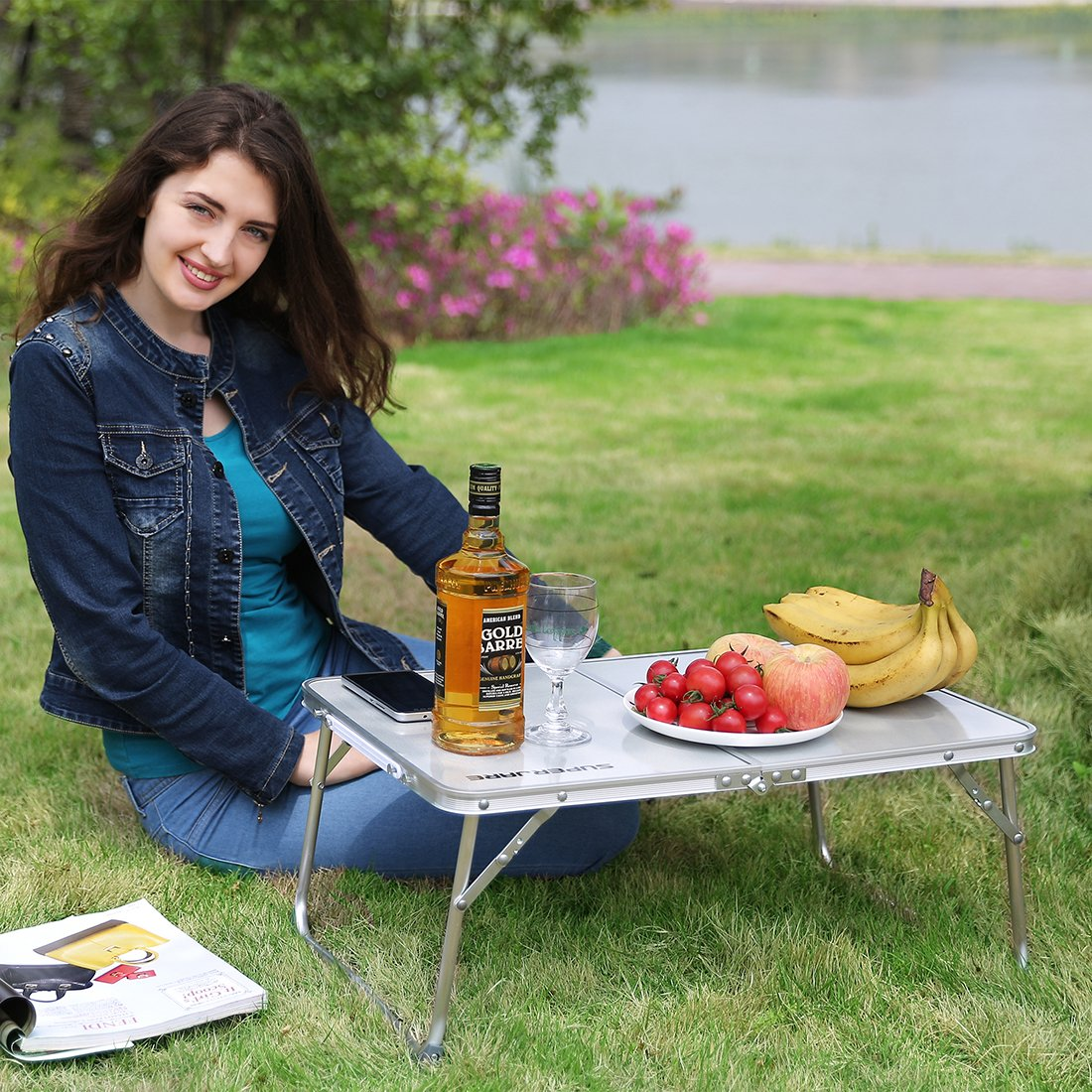 Portable Mini Picnic Table & Ultra Lightweight, Folds in Half with Inner Storage Space - Gray