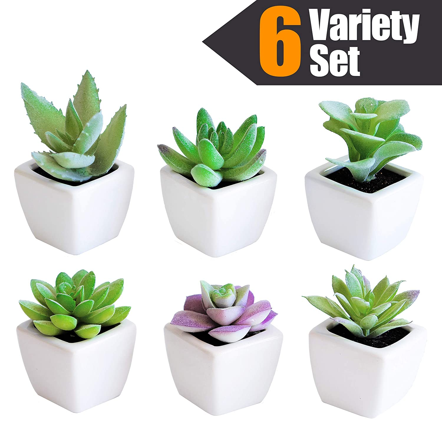 Sophia's Garden Artificial Succulent Plants with Pots – Realistic Greenery Mini Potted Faux Plant Arrangements Home Office Decor, Dorm Room, Kitchen (Green (Regular), White (Ceramic) Pot)