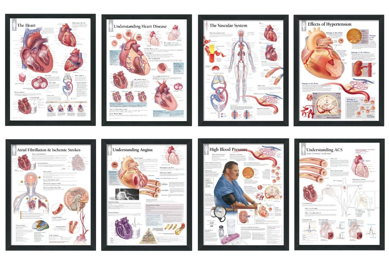 """Set of 8 Framed Medical Posters The Heart; Heart Disease; Angina; Vascular; Atrial Fibrillation; Hypertension; High Blood Pressure; ACS 22""""x28"""" Wall Diagrams Educational Doctors Office Charts"""