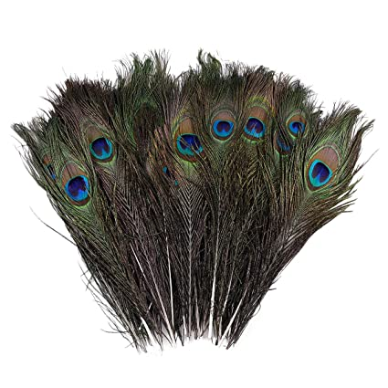 100pcs Real Natural Peacock Tail Feathers 10-12inch Hat Christmas Garden Decor