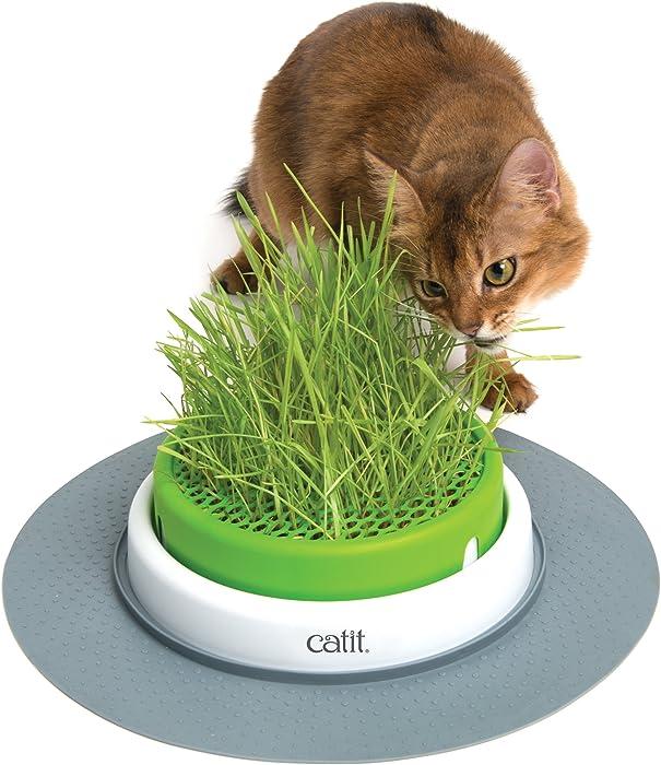 Top 10 Senses Cat Toy Grass Garden Kit