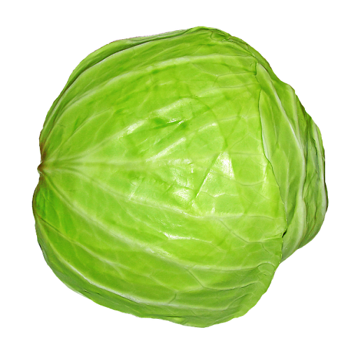 Cabbage Soup Diet For Cross Loss