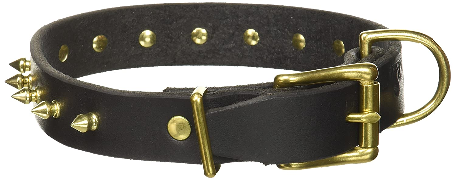 Dean & Tyler Spiked Punch Dog Collar with Solid Brass Spikes and Buckle, 18 by 1-1 4-Inch, Black
