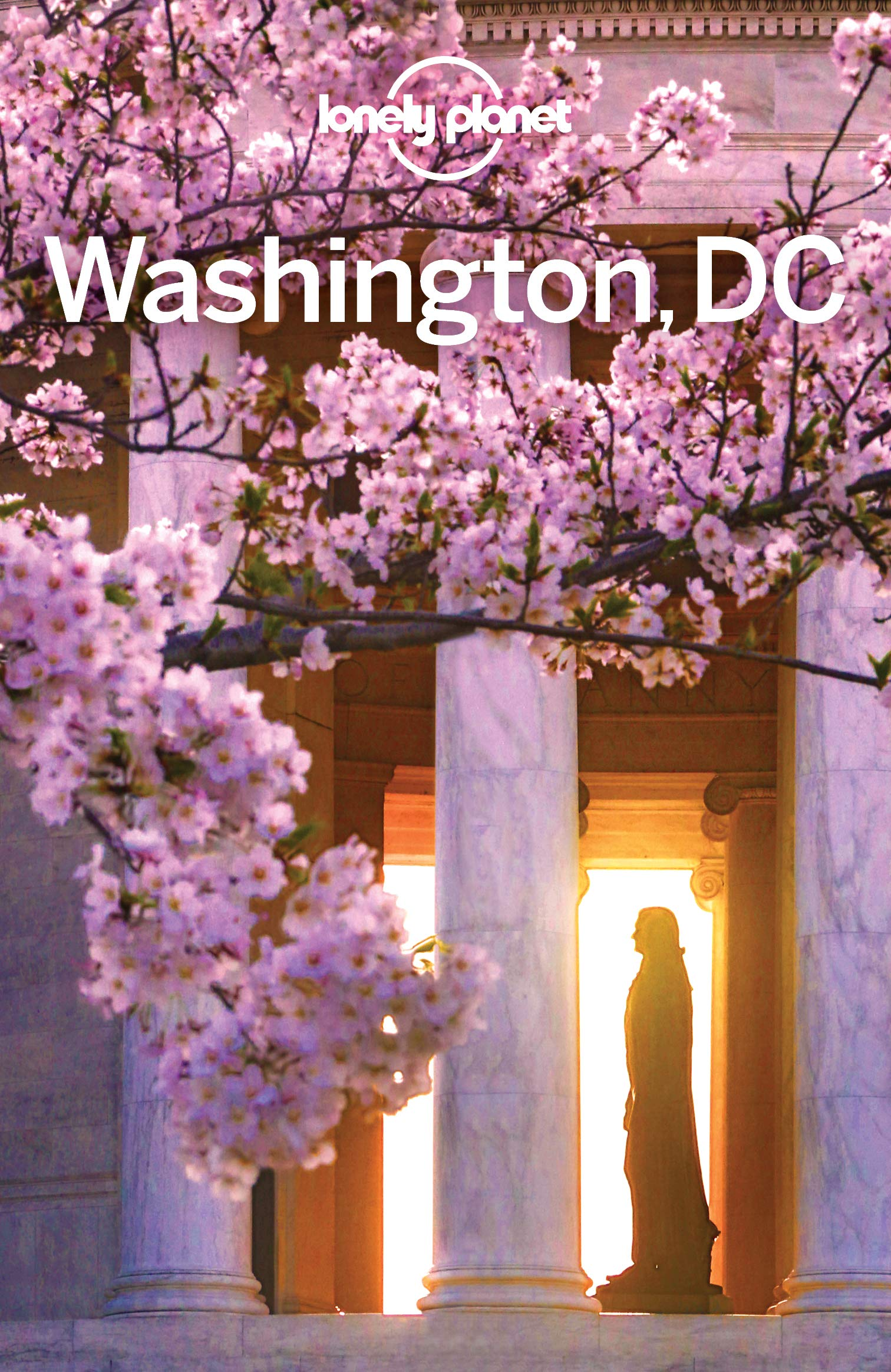 Lonely Planet Washington DC  Travel Guide   English Edition