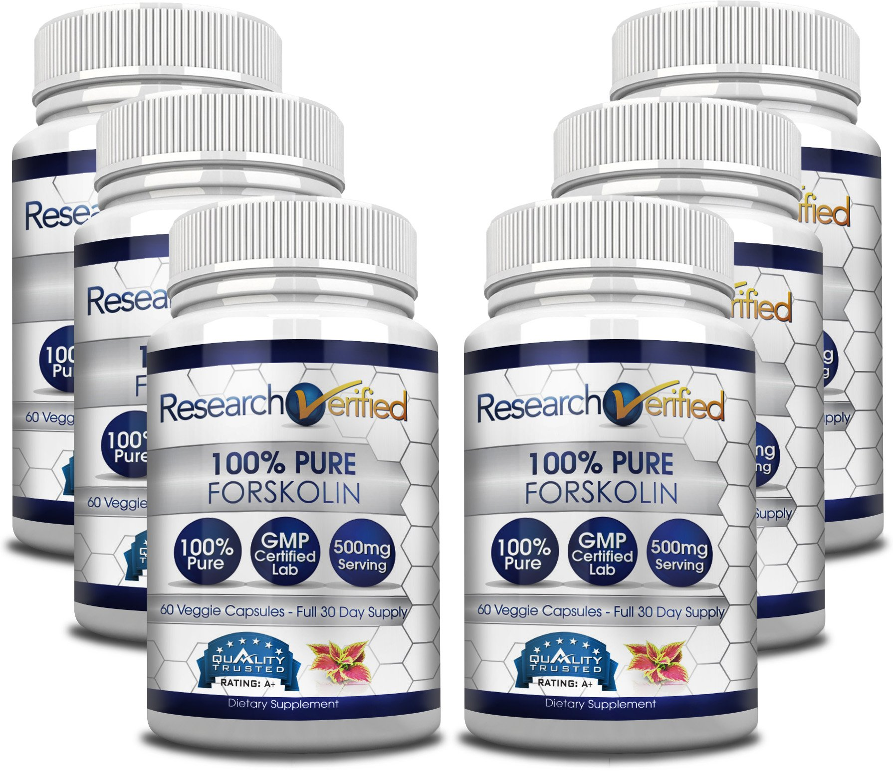 Research Verified Forskolin - 360 Capsules (Six Month Supply) - 20% Standardized Forskolin - 500mg/day - 365 Day 100% Money Back Guarantee - Try Risk Free for Fast and Easy Weight Loss