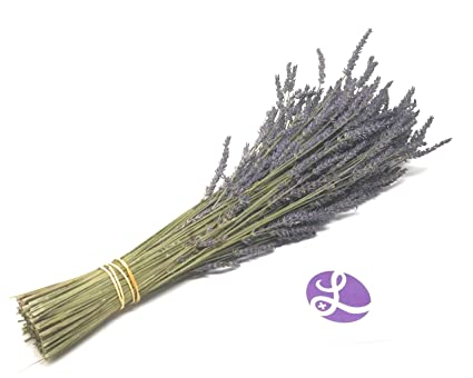 Findlavender - Lavender Dried Premium Bundles - 18 to 22