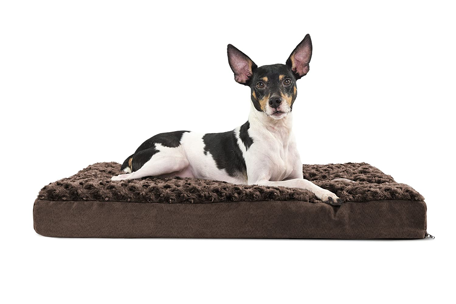 Chocolate MediumFurhaven Pet Products Furhaven Pet Nap Terry and Suede Deluxe 27 by 36Inch Memory Foam Pet Bed, Large, Forest