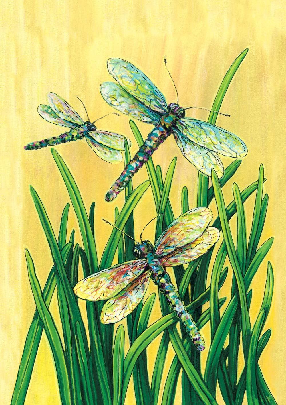 """Toland Home Garden 111402 Dragonflies in Flight 12.5 x 18 Inch Decorative, Garden Flag-12.5"""" x18"""""""