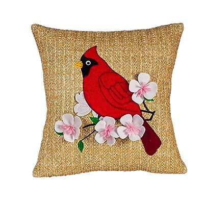 Evergreen Garden Cardinal Outdoor Raffia Pillow - 18 x 2 x 18 Inches : Garden & Outdoor