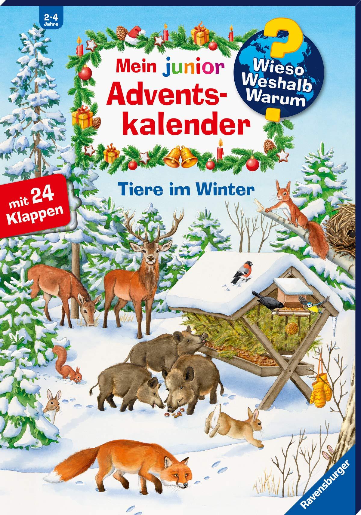 Mein Junior Adventskalender Tiere Im Winter  Wieso  Weshalb  Warum  Sonderband