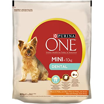 Purina ONE Mini Dental Pienso para Perro Adulto Pollo y Arroz - Pack de 8 x