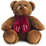 Bear of Allan Teddy Bear Stuffed Animal - Best Wishes Gift, Embroidered Scarf, Super Soft Plush, 10 Inch, Brown