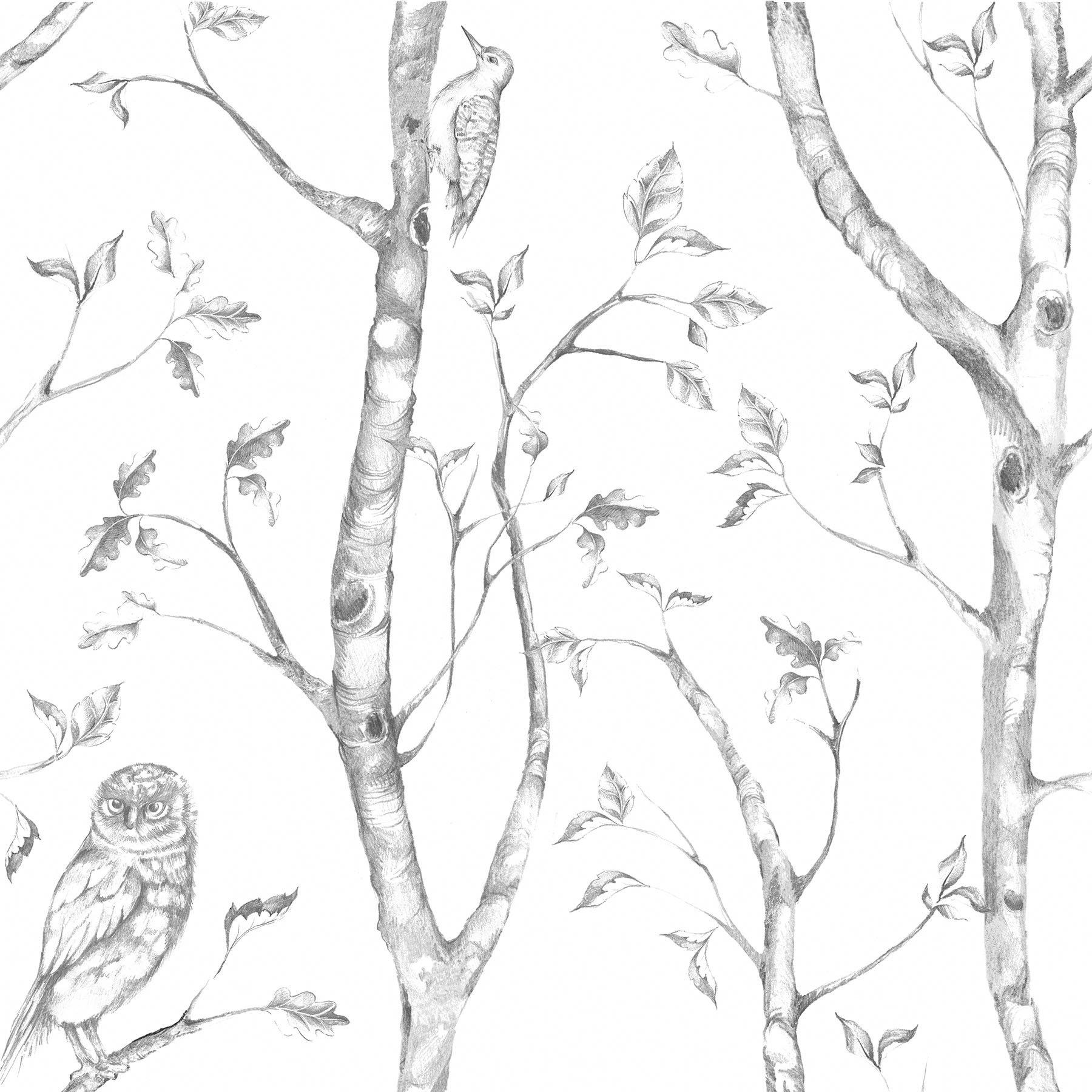 NuWallpaper Wall Pops NU1412 Gray Woods Peel and Stick Peel & Stick Wallpaper by NuWallpaper