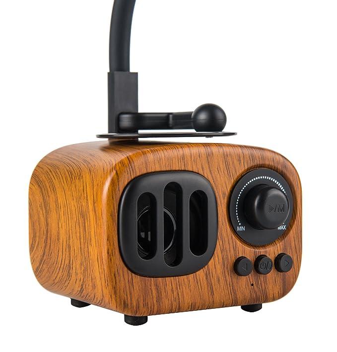 Amazon.com: garyesh Retro Classic Bluetooth gramófono ...
