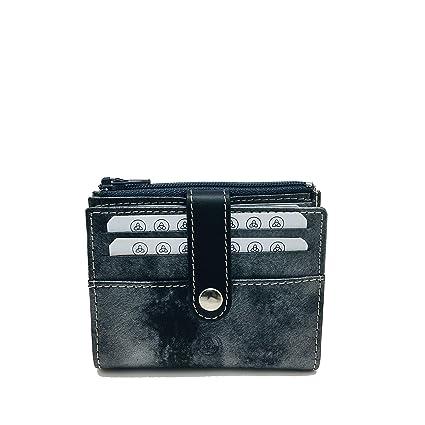 Tarjetero LUGUPELL 40636 RFID Minimal Plata: Amazon.es: Equipaje