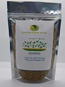 Fenugreek Sprouting Seed, Organic, Non GMO -16 oz - Country Creek Acres Brand - Fenugreek for Sprouts, Garden Planting, Cooking, Soup, Emergency Food Storage, Vegetable Gardening, Juicing, Cover Crop