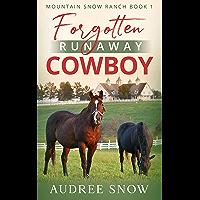 Forgotten Runaway Cowboy: Clean Billionaire Western Romance (Mountain Snow Ranch Book 1)