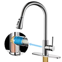 Hersolm Kitchen Faucet with Pull Down Sprayer