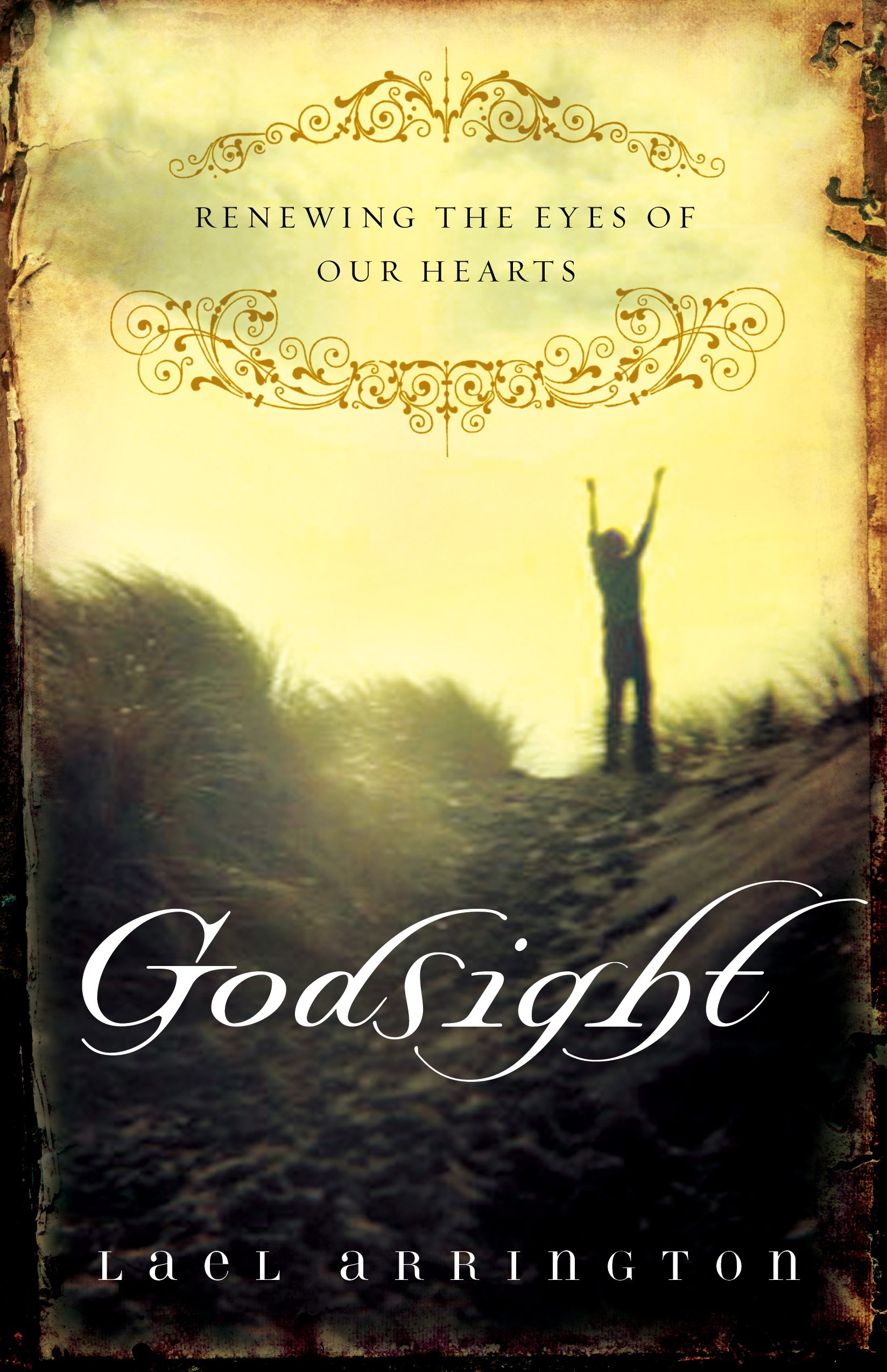 Godsight: Renewing the Eyes of Our Hearts pdf