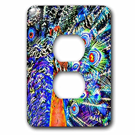 3drose Lsp1785356 Peacock And Feathers Orange Artistic Graphic C