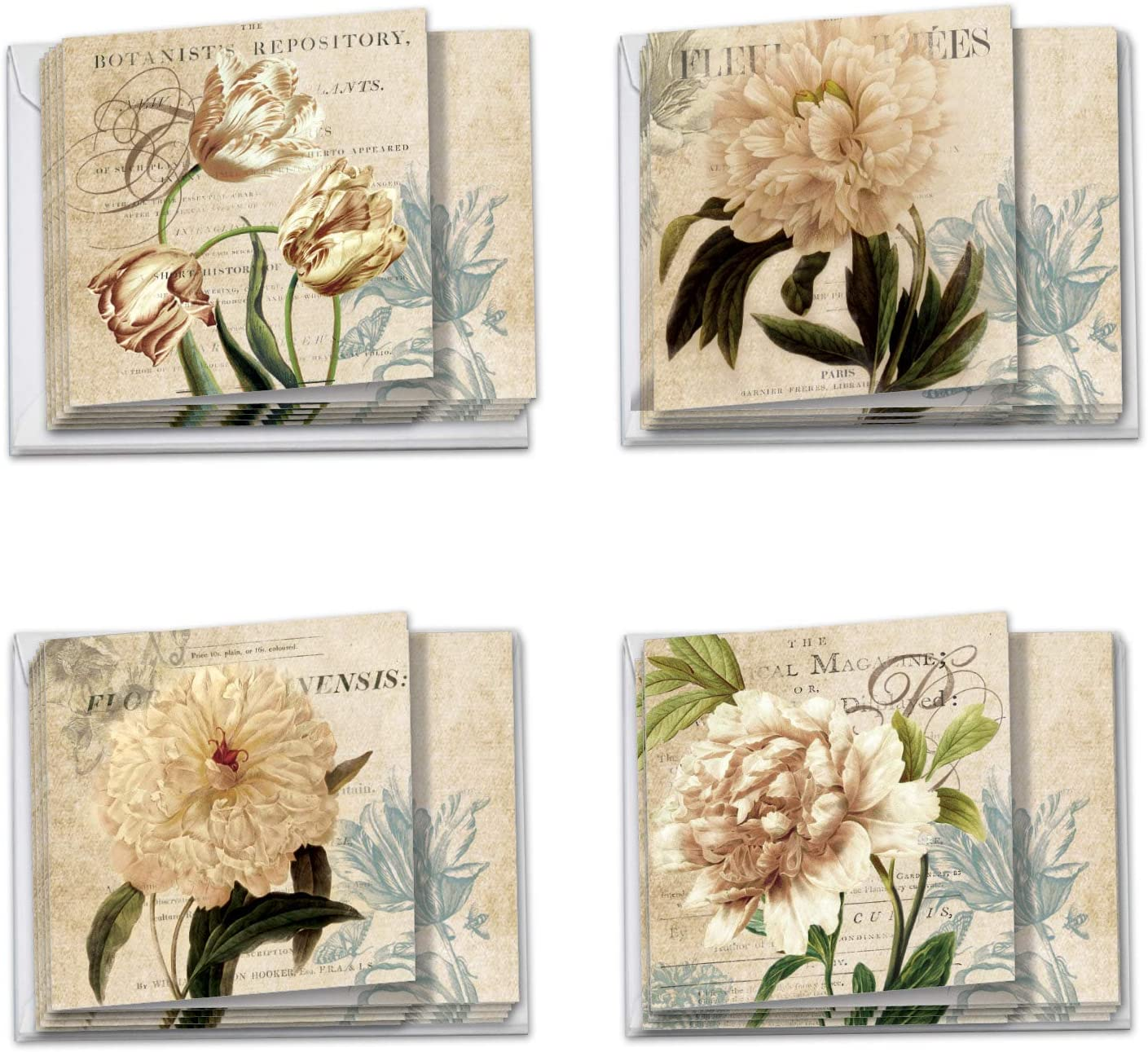 Painted Peonies - 12 Vintage Thank You Cards with Envelopes (4 x 5.12 Inch) - Pretty Floral Appreciation, Gratitude Note Cards - Assorted Flower Notecard Set (3 Each, 4 Designs) MQ4605TYG-B3x4