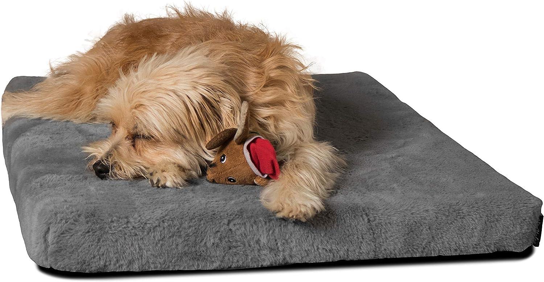 Platz 4 – TrendPet VitaMedog – Viskoelastische Matratze Hundebett für Hunde