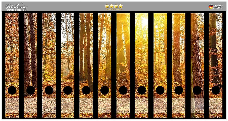 passend f/ür 8 schmale Ordnerr/ücken Wallario Ordnerr/ücken Sticker Sonnenuntergang im herbstlichen Wald in Premiumqualit/ät Gr/ö/ße 8 x 3,5 x 30 cm