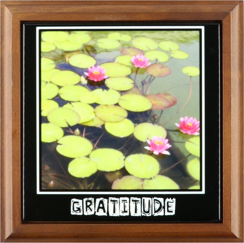 8 by 8 3dRose ft/_29477/_1 Zen Gratitude Lily Pads /& Lotus Flowers Spirituality Motivational Framed Tile