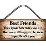 Gigglewick Gifts Funny Sign Shabby Chic Wooden Wall Plaque Crazy Best Friends They Know How Crazy You Are And Still Happy To Be Seen In Public With You