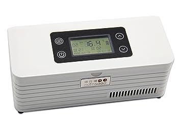 Mini Kühlschrank Für Insulin : Cgoldenwall tragbar insulin kühler kÜhl box travel drug reefer mini