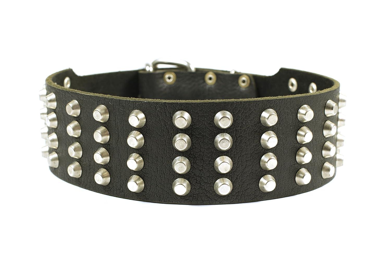 Dean & Tyler 4 Row Studs Dog Collar, 56 x 6 cm, Black