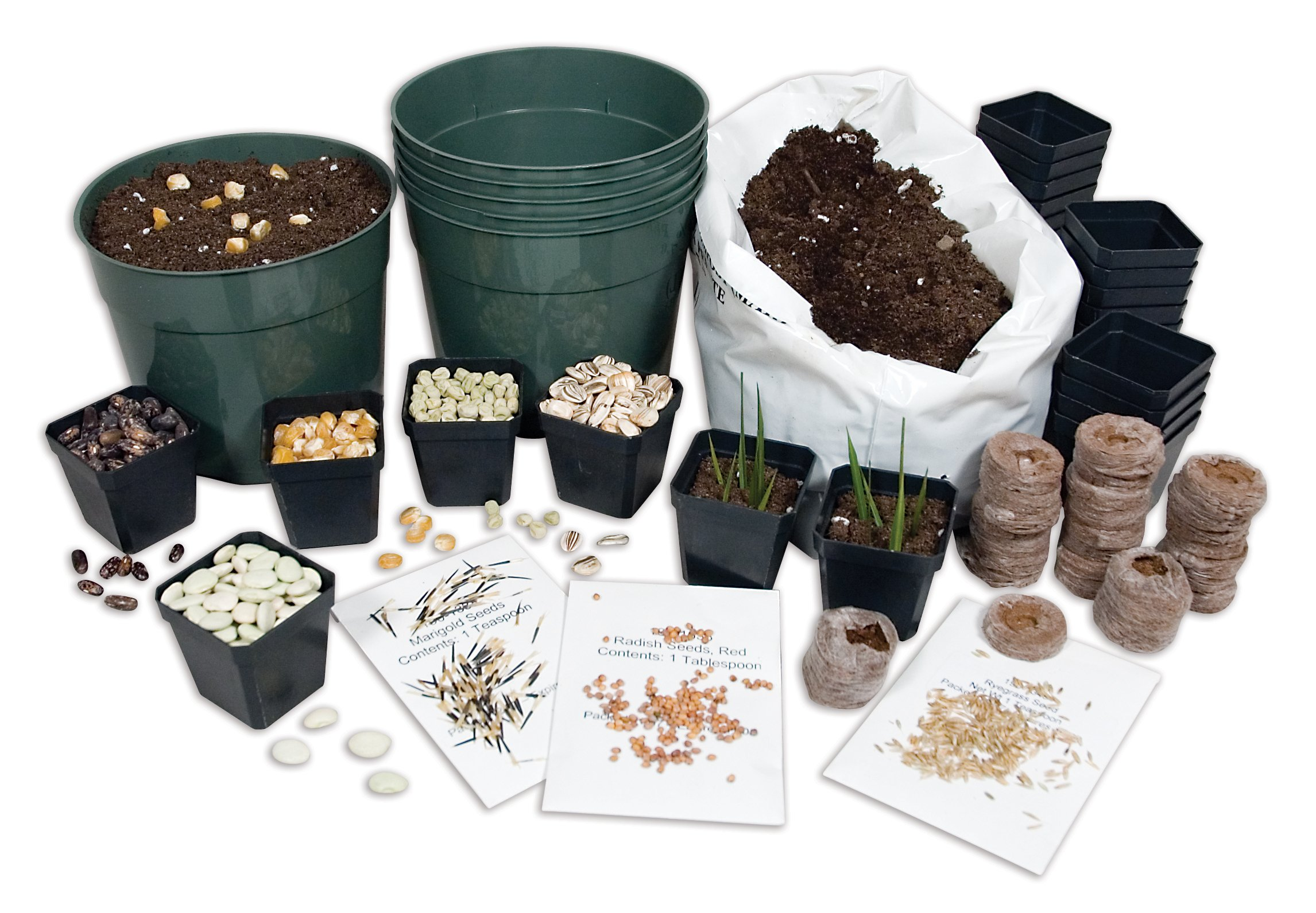 Delta Education Planting Starter Set by Delta Education