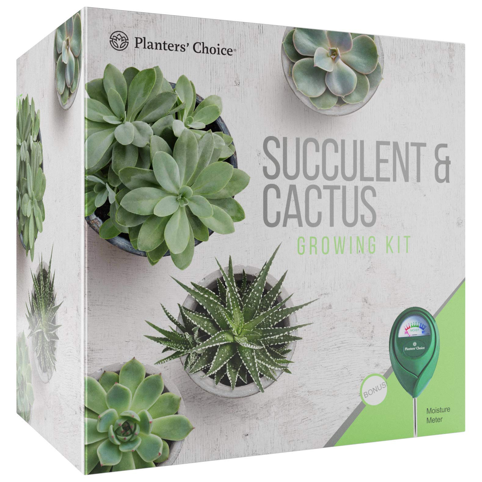 Succulent & Cactus Growing Kit with Moisture Meter - Grow 4 Plants - Includes Everything Needed to Grow Successfully - Great Gift (Cactus & Succulent) by Planters' Choice
