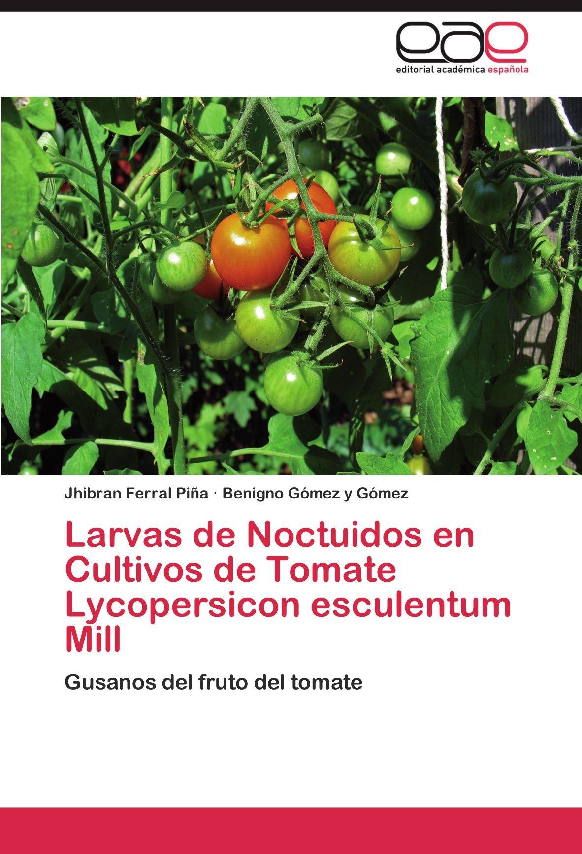 Larvas de Noctuidos En Cultivos de Tomate Lycopersicon Esculentum Mill: Amazon.es: Jhibran Ferral Pi a., Benigno G. Mez y. G. Mez, Benigno Gomez y.
