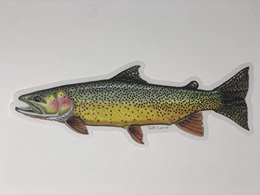 Simms Fishing Outdoor Sports Trout Vinyl Decal Sticker Window Cooler Truck White