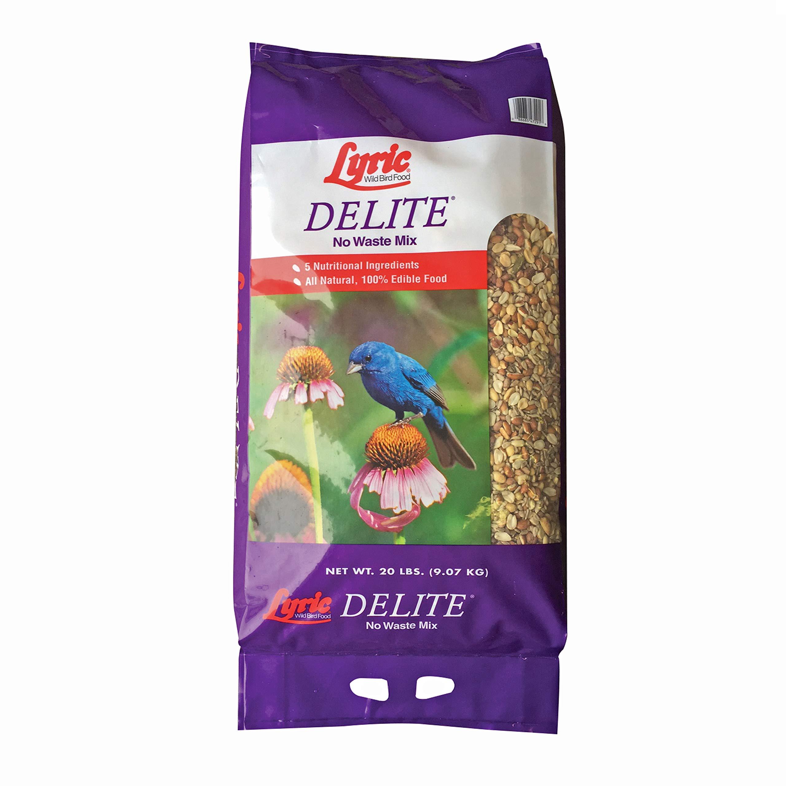 Lyric 2647462 Delite High Protein No Waste Wild Bird Mix, 20 lb by Lyric
