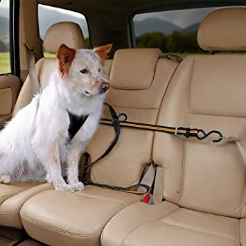 Amazon Kurgo Zip Line With Dog Leash And Carabiner Pet. Kurgo Zip Line With Dog Leash And Carabiner. Seat. Seat Belt Harness Zipper At Scoala.co