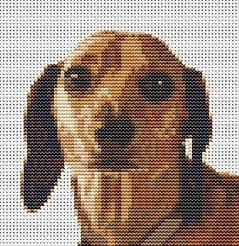 Amazon.de: Dachshund Sausage Dog Kreuzstich-Set, 5 x 5.2.5, 12, 5 cm ...