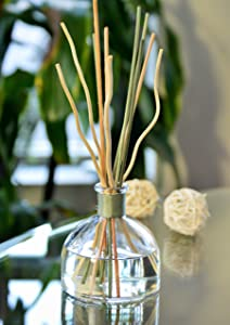 Manu Home White Tea Reed Diffuser Set - 5.5 oz Natural Reed Diffuser Sticks | Aromatherapy Oils | Two Sets of Sticks | Made in USA